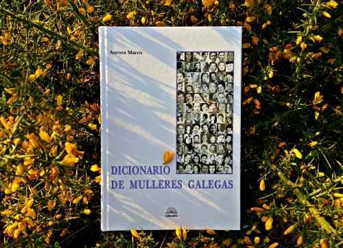 """""""Dicionario de mulleres galegas"""" (Edicións A Nosa Terra)"""