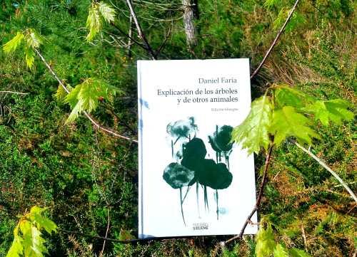 """""""Explicación de los árboles y de otros animales"""" (Ediciones Sígueme)"""