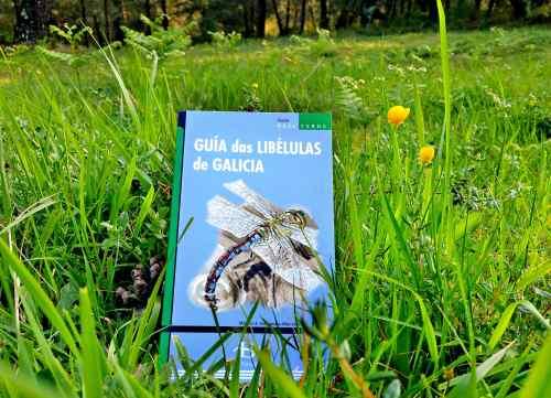 """""""Guía das libélulas de Galicia"""" (Baía Edicións)"""