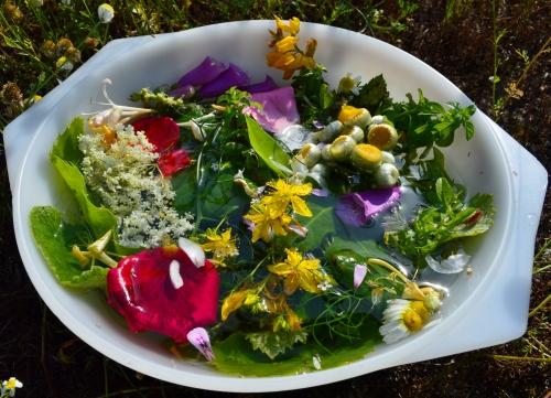 A tradición das plantas e das flores de San Xoán, no Monte Pituco