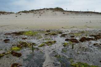 Illote Areoso: marcas de posibles restos arqueolóxicos