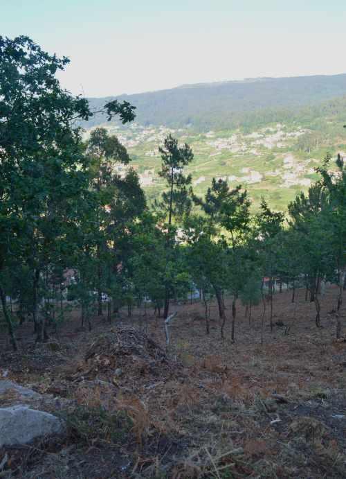 Vista da Encavada dende Penizas