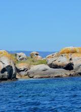 Unha estatua como as da illa de Pascua en plena ría de Arousa?