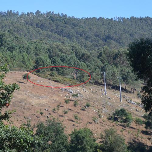 Dentro da marca en vermello, a área do petróglifo de Pinal de Caeiro