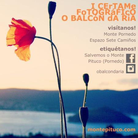 I Certame Fotográfico 'O Balcón da Ría'