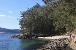 A praia a carón do embarcadoiro