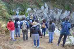 A carón da antiga fonte, hoxe seca pola presenza de eucaliptos