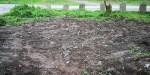 Terra de dubidosa procedencia, extendida e aplastada nun recanto da arboreda doPituco