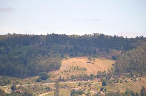 Vista da corta, na zona de Fontenla e do rego das Presas
