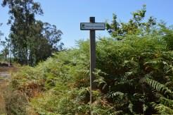 Espazo Sete Camiños na Comunidade de Montes de Lourizán