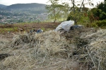 Verquido de lixo na pista doPituco