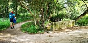 Camiño de Santiago, ao seu paso por Tomeza