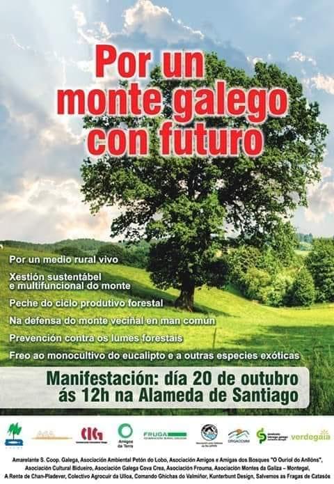 Por un monte galego con futuro