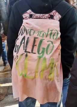 Movemento galego polo clima