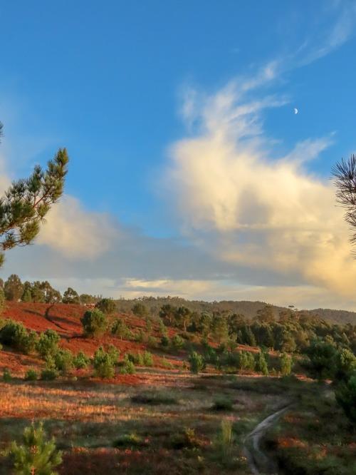 Andaina polo Monte Pituco ao solpor. Foto de Antonio Costa