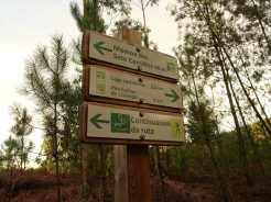 Sinalización do Espazo Sete Camiños. Andaina polo Monte Pituco ao solpor. Foto de José Manuel Domínguez.