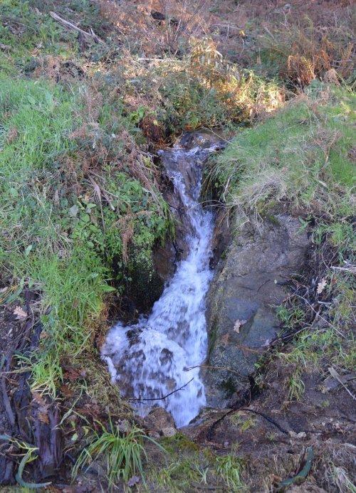 Rego das Presas, ameazado pola construcción dun depósito de auga