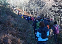 Ruta da Plataforma Montes do Morrazo por Vilaboa