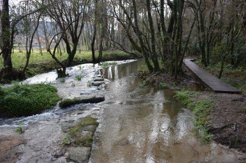 Día dos Humidais no río Tomeza con Vaipolorío