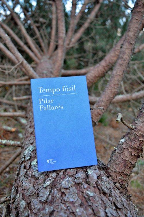 """""""Tempo fósil"""", de Pilar Pallarés (Chan da Pólvora, 2019)"""