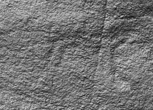 Cervo identificado por Antonio Costa en Mogor, Foto: Antonio Costa