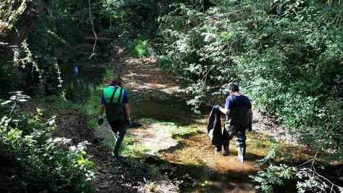 XX Campaña de Limpeza do Río Gafos, organizada por Vaipolorío