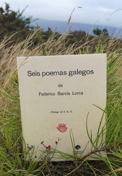 """""""Seis poemas galegos"""" de Federico García Lorca"""